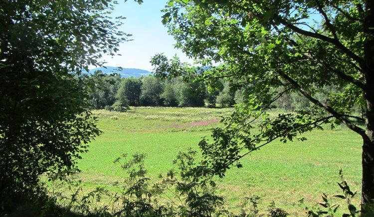 Böhmerwaldblickweg - Torfau