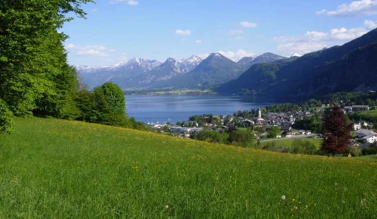 Einer der vielen schönen Ausblicke auf den Wolfgangsee. (© Wolfgangsee Tourismus Gesellschaft)