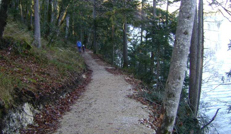 Part of the path at the southside of lake Fuschlsee (© Tourismusverband Fuschl am See)