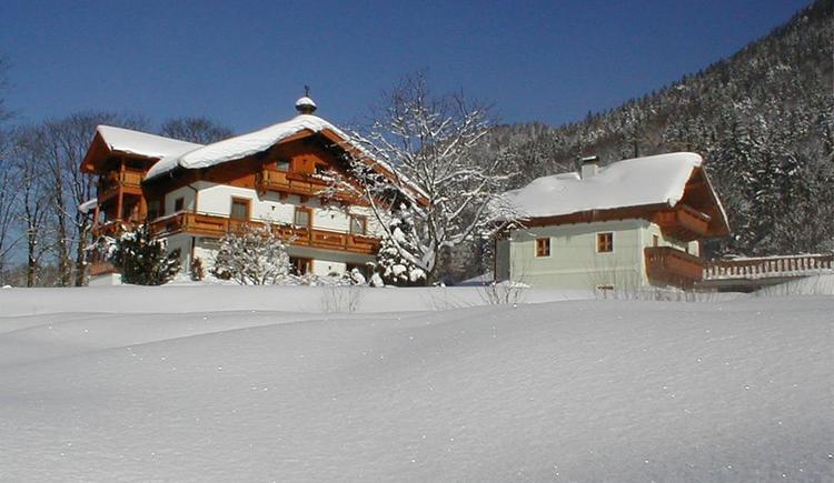 Hirschpoint im Wintermantel (© Hirschpoint)