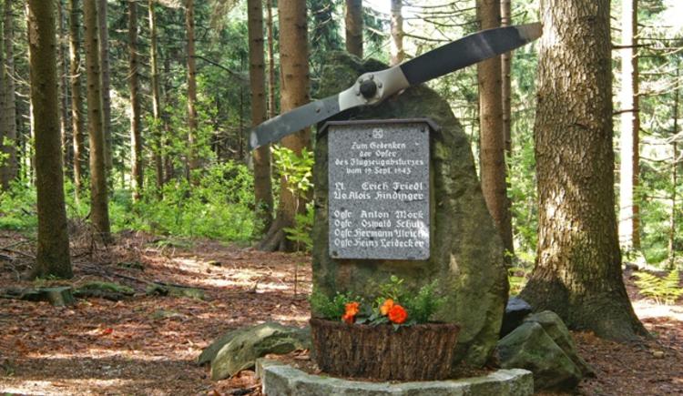 Flugzeugabsturzstelle beim Jagabild. (© www.peterfoto.at)