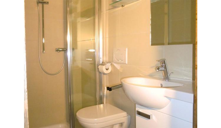 seitlich ein Waschbecken, Toilette, im Hintergrund die Dusche