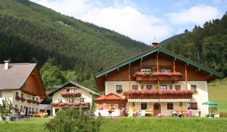Schmiedbauernhof - Faistenau (© Schmiedbauernhof)