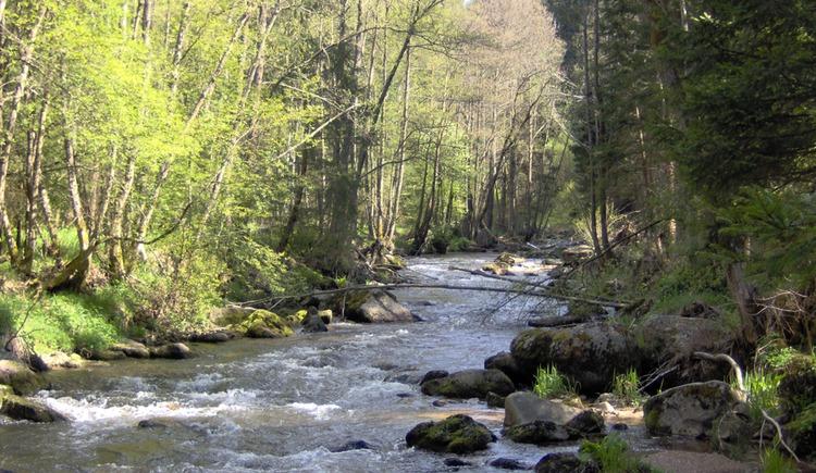 Grenzfluss Maltsch (© Natura 2000)
