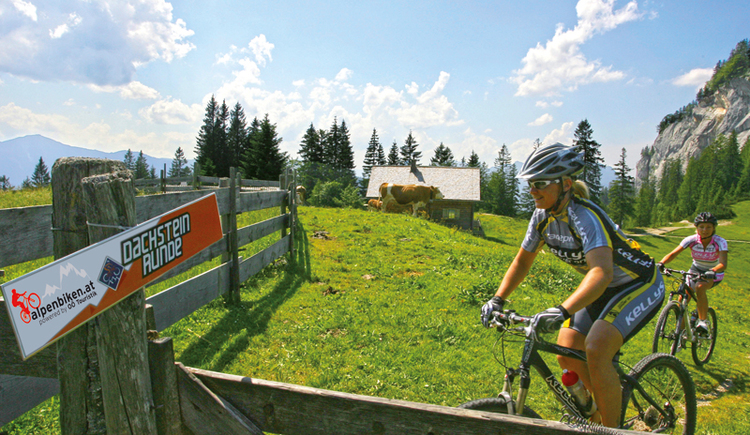 Mountainbiketour Dachsteinrunde. (© Kelly's (c) Erwin Haiden)