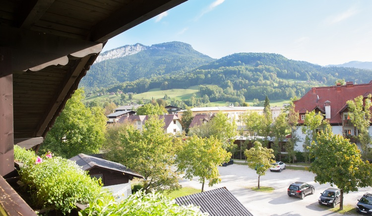 From the balcony you can enjoy the magnificent view over the mountains of Bad Goisern