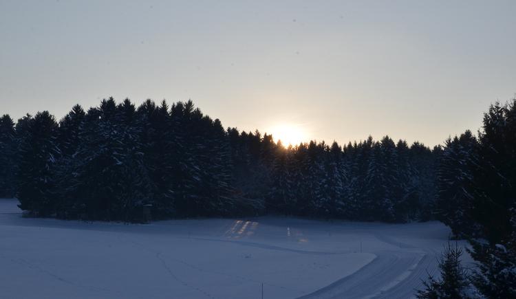 Langlaufzentrum Tal