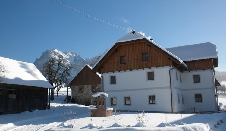 Ferienhof Dansbach, Winter, Kinder, Schifahren, Bauernhof