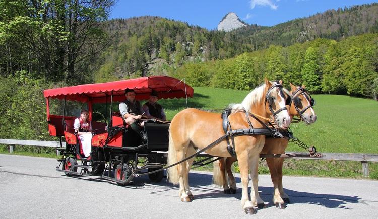 Pferdekutschenfahrten am Schwarzensee