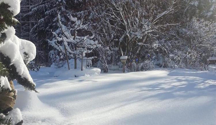 der Garten im Winter (© anni)