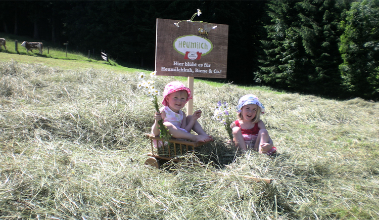 "Children sit in the hay or in the ""Leiterwagen\"", behind them a sign \""Heumilch\"" in the background fenced calves."