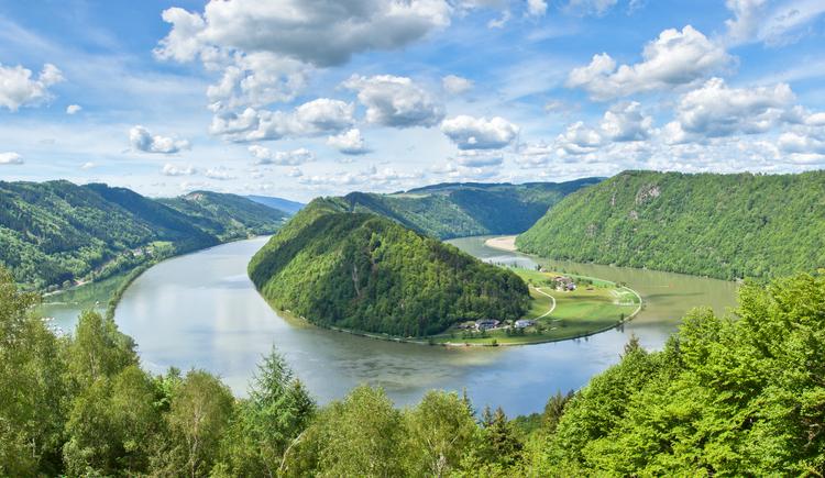 Blick vom Schlögener Donaublick auf die Schlögener Schlinge.
