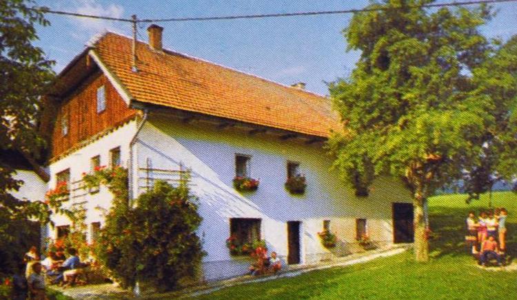 Ferienhof Hofbauer