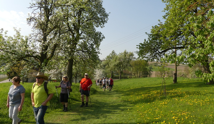 P1020941 (© Naturpark Obst-Hügel-Land)