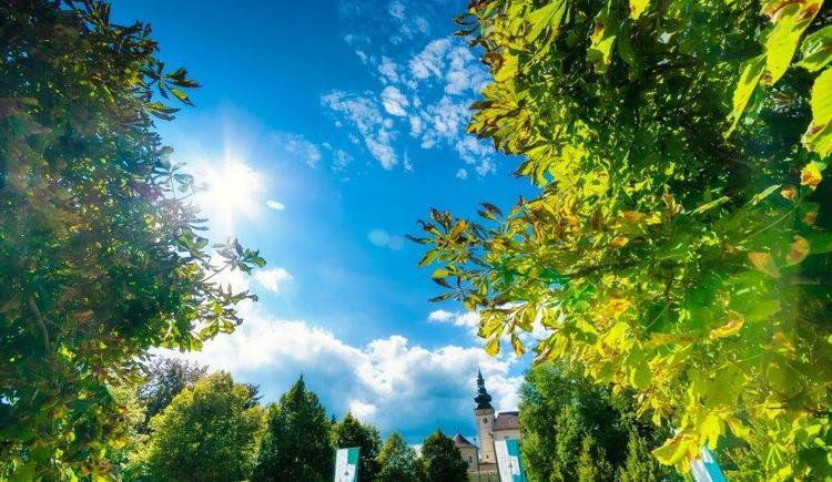 Gastgarten mit Blick auf das Schloss (© Schlossbrauerei Weinberg)