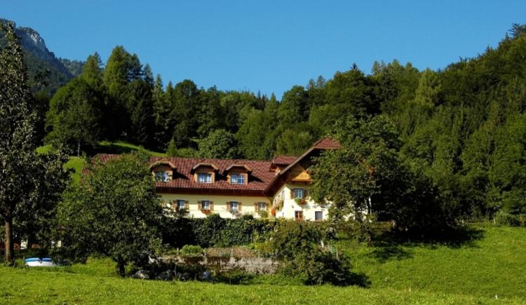 unser Hof ist inmitten vom saftigen Grün. (© Roithhof)