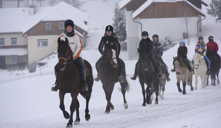 Reitergruppe im Schritt auf auf einer schneebedeckten Straße. (© ***Ramlhof)