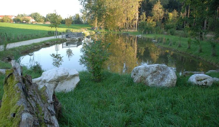 Biotop (© Marktgemeinde Sattledt)