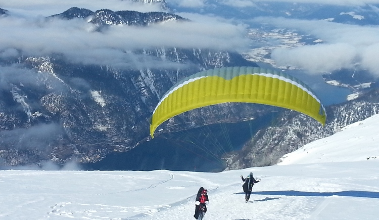 Paraglider am Krippenstein (© dasGams)