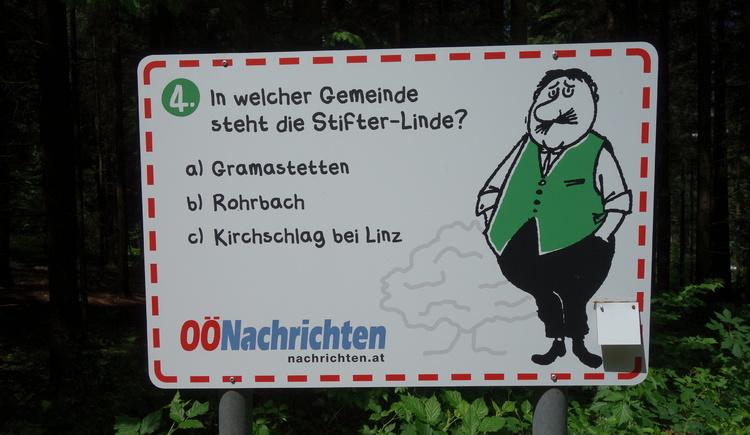 #4 (© Johann Mülleder)