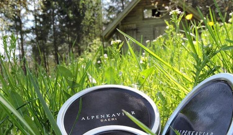 Alpenkaviar (© www.alpenkaviar.at)