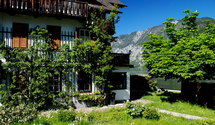The outdoor view of the Apartment in Hallstatt