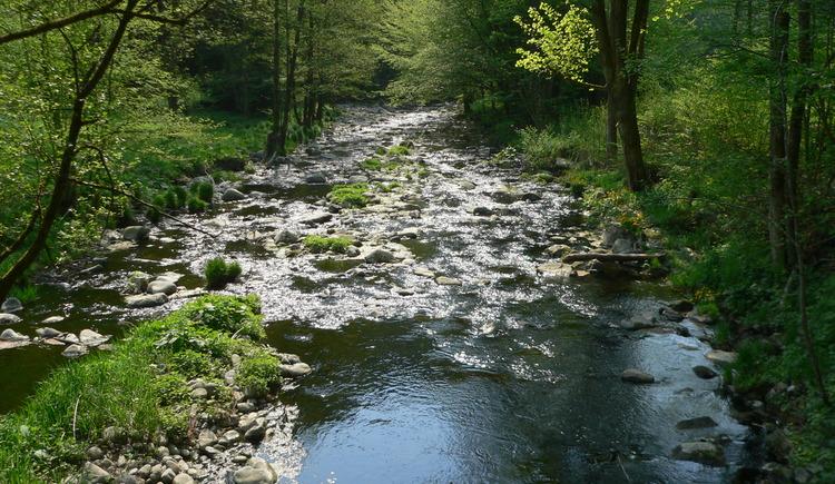 Naturschutzgebiet Rannatal. (© TV Neustift)