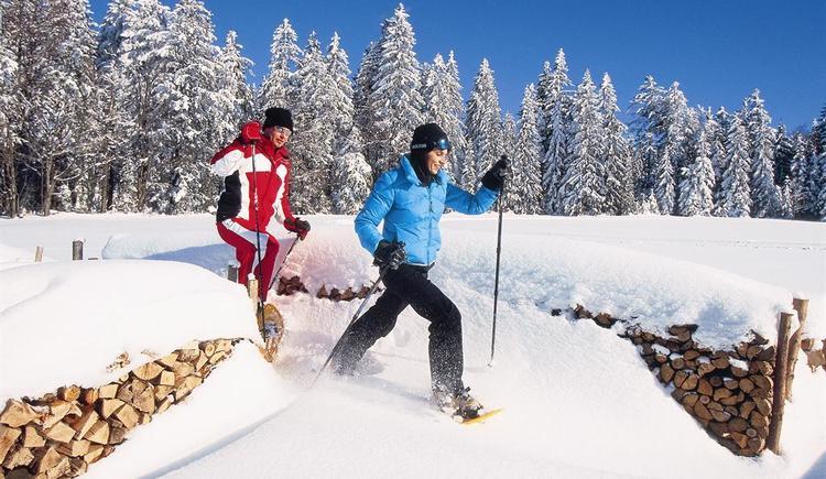 Schneeschuhwandern (© OÖ Werbung / Himsl)