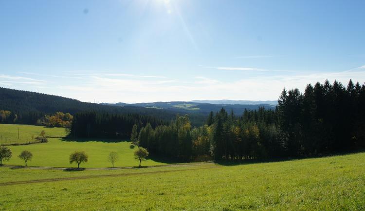 Ausblick in Sandl auf die Mühlviertler Landschaft (© Tourismusverband Mühlviertler Kernland)