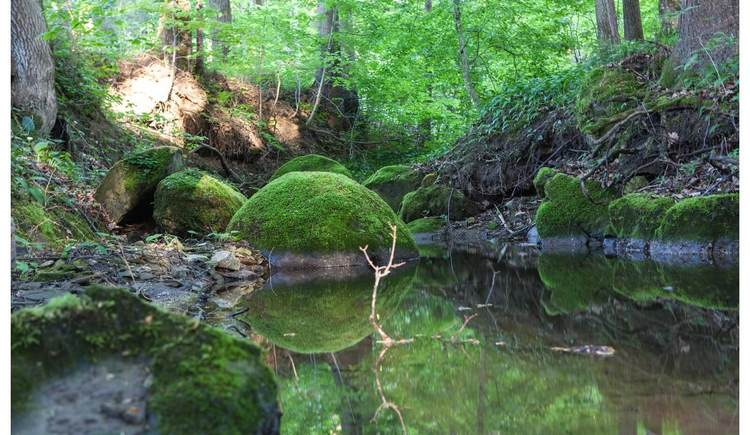 Naturdenkmal Kugelsteine (© TVB Bad Hall, Horst Bachofner)