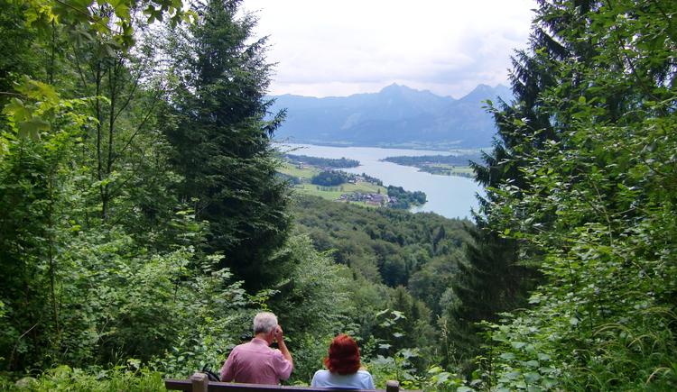 Blick auf den Wolfgangsee. (© WTG)