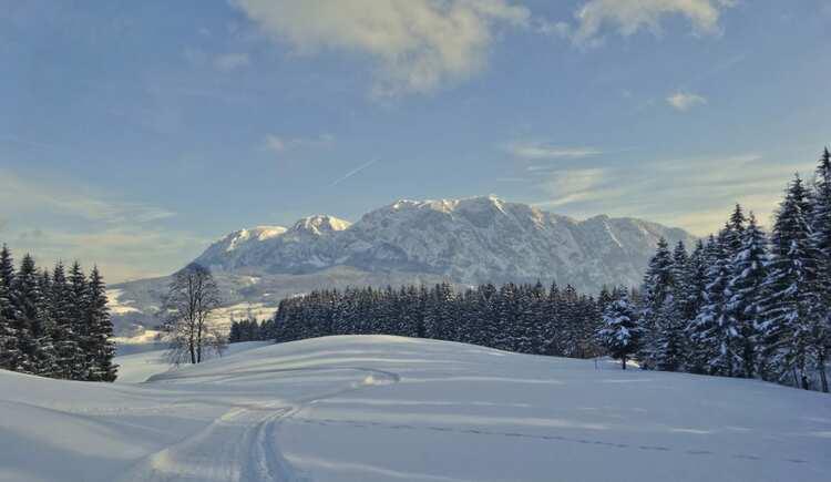 Winterlandschaft am Atterseee. (© seekda)