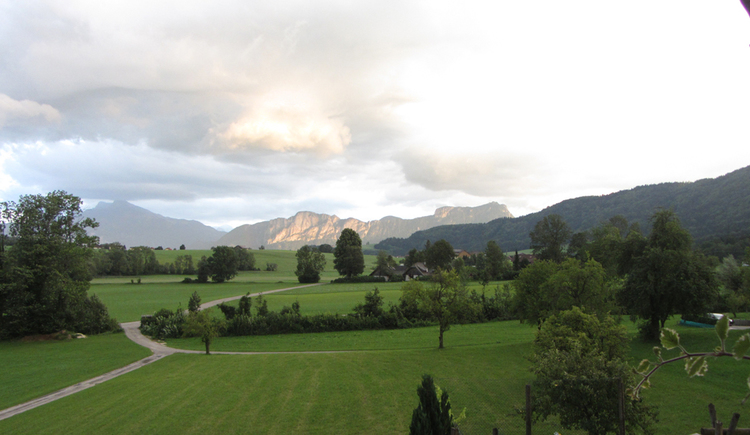 View out of the window. Lawn with trees and in the background mountains.