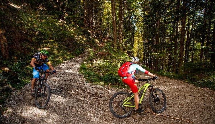 Auch fahrerisch bietet die Schmankerlrunde einen Genuss auf dem alten Rodelweg nach Anzeanau. (© Erwin Haiden bikeboard.at)