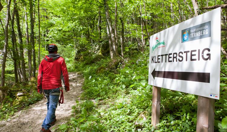 Kletterzentrum/Klettersteig Trattenbach. (© Jakob Gsöllpointner)