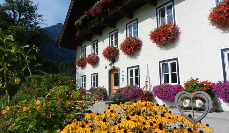 Stadlmannbauer Blumen