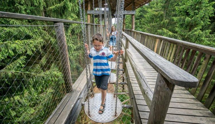 Kinder balancieren über eine Tellerbrücke (© Baumkronenweg Kopfing, OÖ)