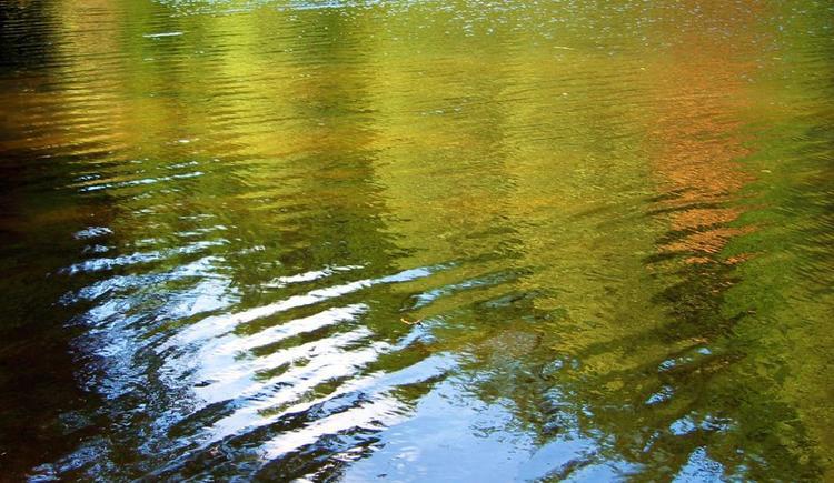 Flussbaden (© Schwarzmann)