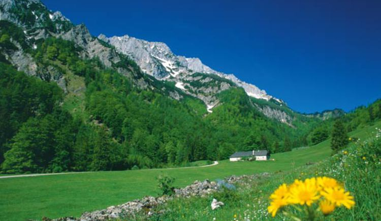 Blumaueralm in der Nationalpark Kalkalpen Region. (© TV Nationalpark Region Ennstal)