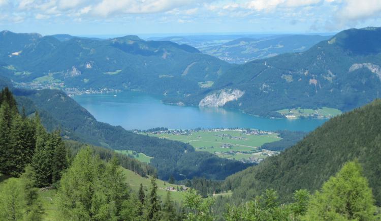 Blick auf den Wolfgangsee (© Gisbert Rabeder)
