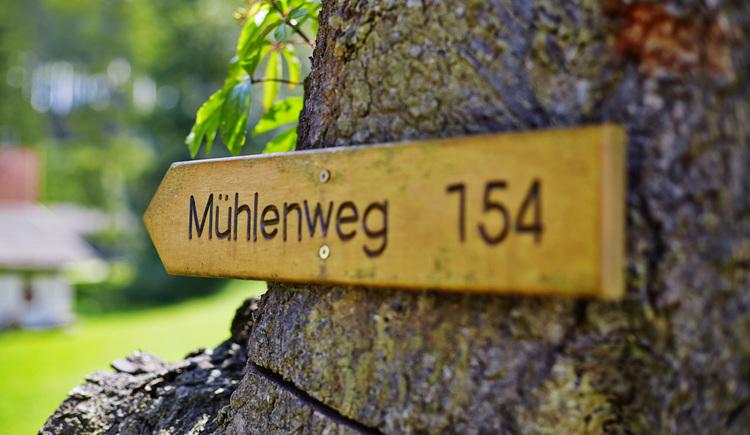 10-Mühlen-Wanderweg (© Tourismusverband Reichenthal)