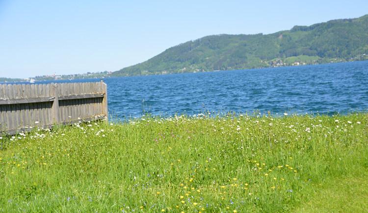 Badeplatz mit Blick auf das Ostufer