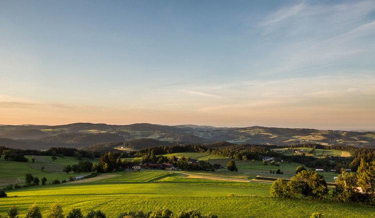 Landschaftsblick im Mühlviertel. (© Oberösterreich Tourismus GmbH/Susanne Einzenberger)