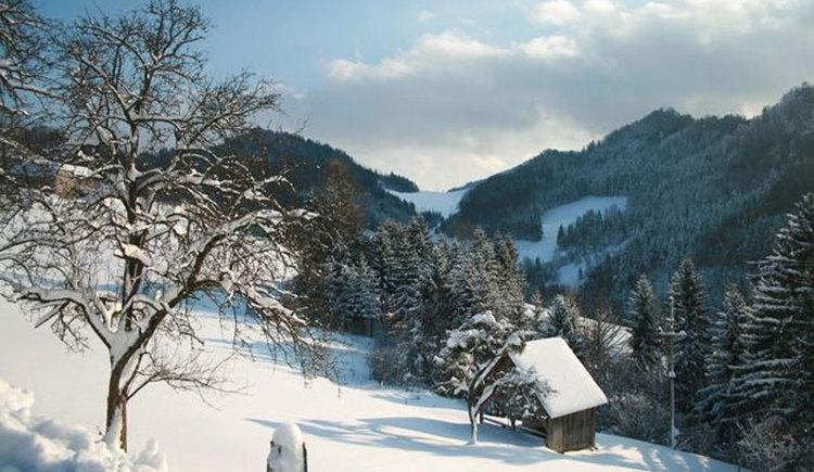 Ferienwohnung Kaltenberger - Urlaub am Bauernhof - Laussa