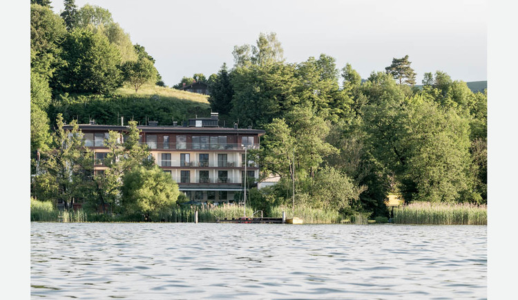 View of the hotel from the lake, trees