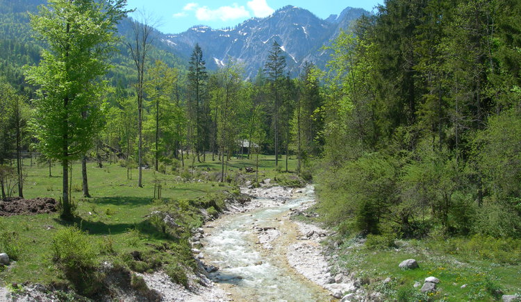 Am Weg zur Chorinskyklause in Bad Goisern am Hallstättersee. (© OÖ Tourismus / green-solutions)
