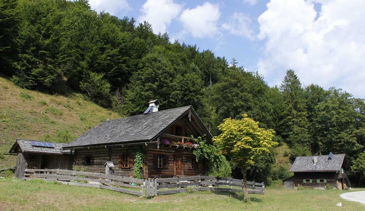 At the Weißenbach tour you will pass the Brunntalalm. (© TVB)