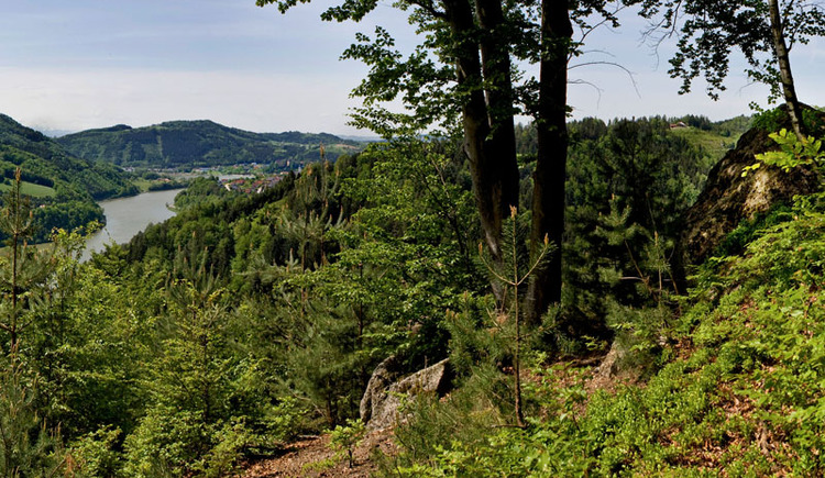 Panoramablick Dichterstein