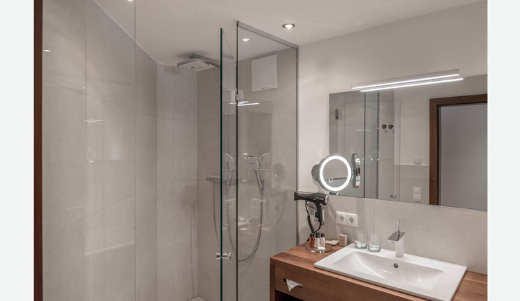 Bathroom, shower, washbasin, hairdryer, cosmetics in small bottles, cosmetic mirror, mirror