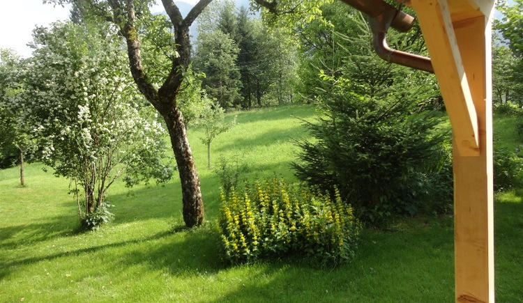Relax in the extensive garden with lots of fruit trees and enjoy the peace and quiet.
